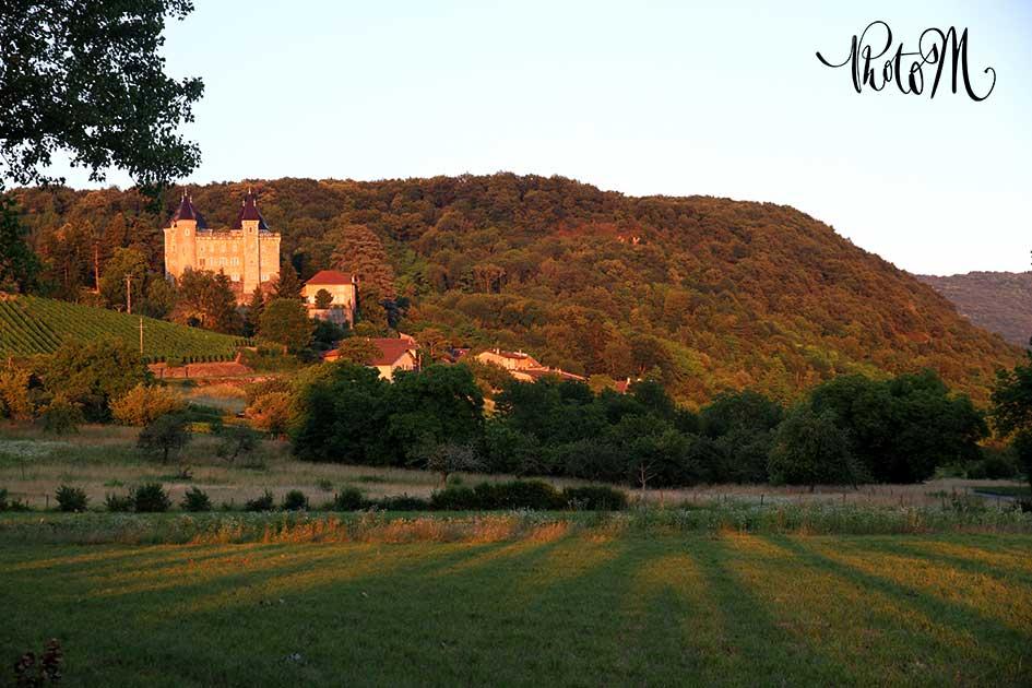 Photographie professionnel Photos-M. Département de l'Ain, à St Jean le Vieux proche d'Ambérieu-en-Bugey, Bourg-en-Bresse, Lagnieu, Pont d'Ain