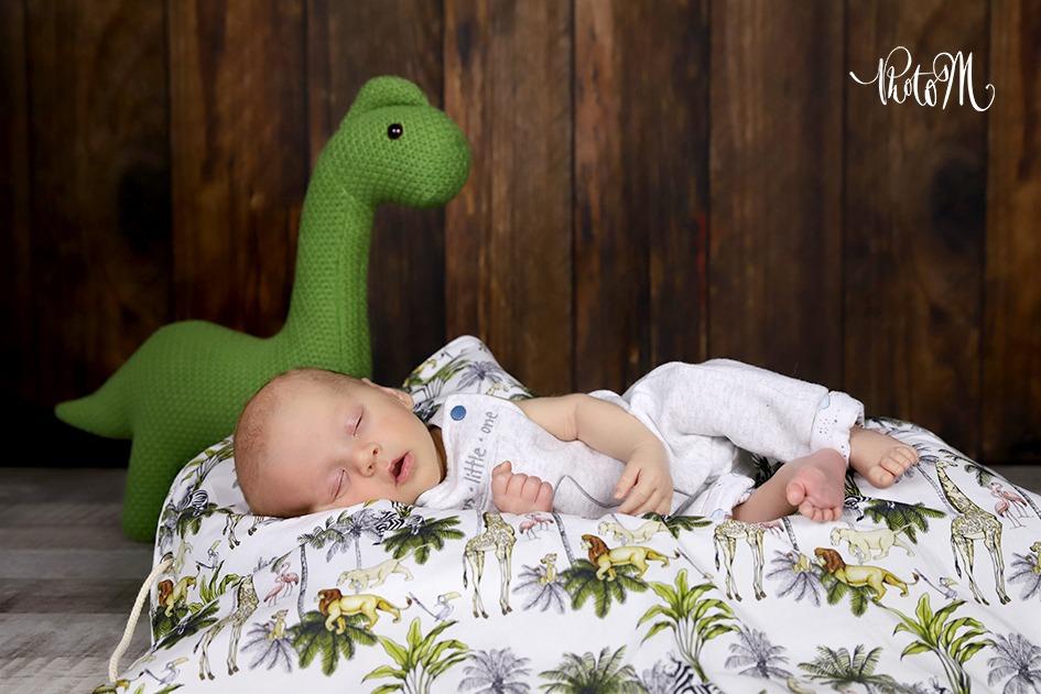 Petit dinosaure veille sur bébé